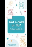 Got a cold or flu? Find out what to do brochure