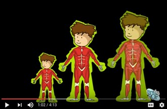 Duchenne muscular dystrophy – animation