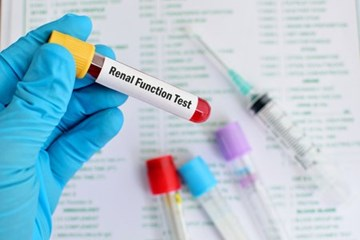 Kidney function blood test