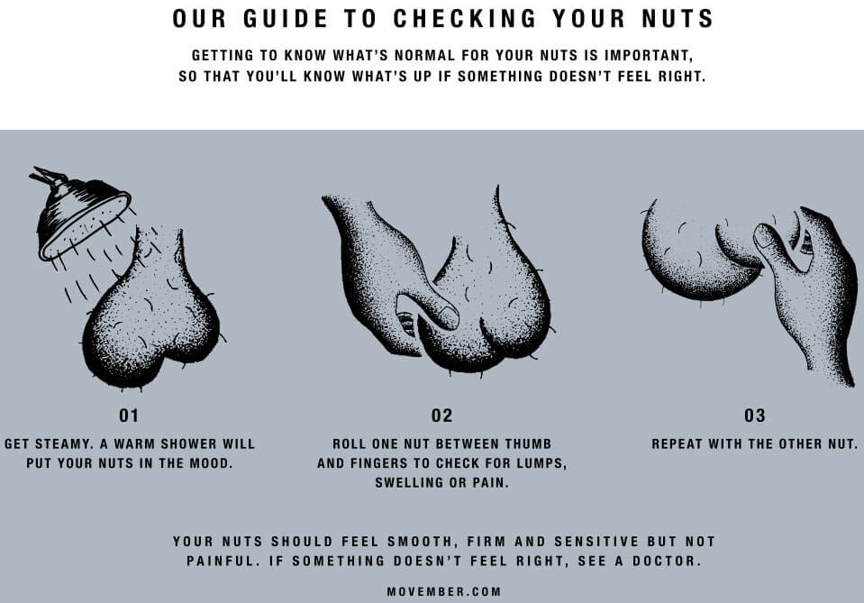 Get the Lowdown – Our guide to checking your nuts