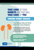 Take care of your kidneys and they will take care of you - Chronic kidney disease