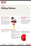 Kidney stones fact sheet